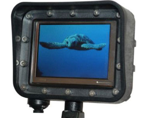Monitor-for-diving